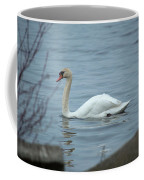 Swan A Swimming Coffee Mug