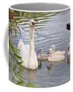 Swan And Chicks Coffee Mug