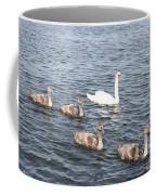 Swan And His Ducklings Coffee Mug