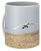 Swan Coming In For A Landing Coffee Mug