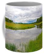 Swan Lake In Grand Teton National Park-wyoming  Coffee Mug