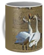 Swan Pair Coffee Mug