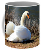 Swan Protects Her Eggs Coffee Mug