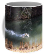 Swan Skid Coffee Mug