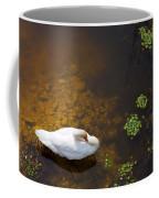 Swan With Sun Reflection On Water. Coffee Mug
