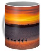 Swans In The Sunrise Coffee Mug