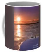 Swans Sunrise Coffee Mug