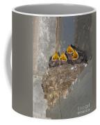 Sweet Adeline My Adeline Coffee Mug by Robert Frederick