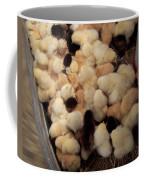 Sweet Baby Chicks For Sale Coffee Mug