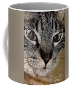 Cat - Sweet - Boy Coffee Mug