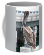 Sweet Brown Pelican - Digital Painting Coffee Mug
