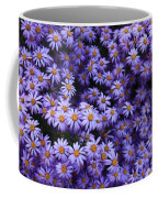 Sweet Dreams Of Purple Daisies Coffee Mug
