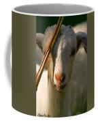 Sweet Kid Coffee Mug