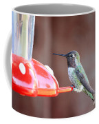 Sweet Little Hummingbird On Feeder Coffee Mug