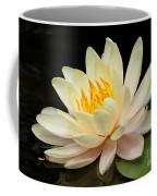 Sweet Peach Water Lily Coffee Mug