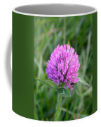 Sweet Pink Clover Coffee Mug