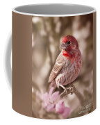 Sweet Songbird Coffee Mug