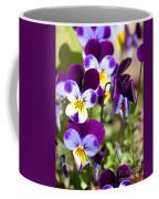 Sweet Viola Coffee Mug