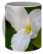 Sweet White Trillium 5 Coffee Mug