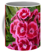 Sweet William Has A Pink Eye Coffee Mug