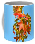 Sweetgum Leaves In Autumn Coffee Mug