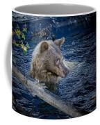 Black Bear On Blue Coffee Mug