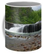 Swimming Hole Coffee Mug