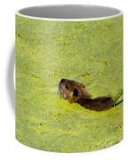 Swimming In Pea Soup - Baby Muskrat Coffee Mug