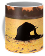 Swimming Kalahari Elephants Coffee Mug
