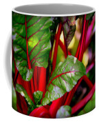 Swiss Chard Forest Coffee Mug by Karen Wiles