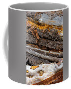 Switchback Coffee Mug