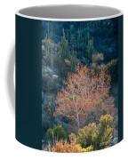 Sycamore And Saguaro Cacti, Arizona Coffee Mug