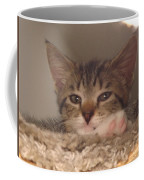Symphony Keeping Watch Coffee Mug