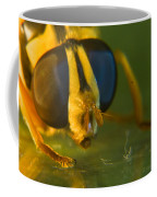 Syrphid Eyes And Antennae Coffee Mug