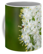 Syrphid Feeding On Alliium Blossom Coffee Mug