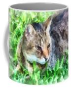 Tabby Cat Closeup Coffee Mug
