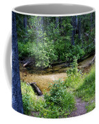 Tacoma Creek 1 Coffee Mug