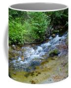 Tacoma Creek 2 Coffee Mug