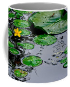 Tadpole Haven Coffee Mug by Frozen in Time Fine Art Photography