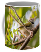 Tailor Bird Coffee Mug