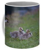 Take A Nap Coffee Mug