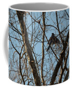 Takeoff - Bluejay Coffee Mug