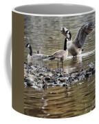 Taking Umbrage Coffee Mug