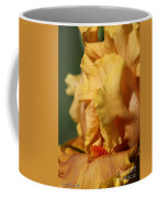 Tall Bearded Iris Named Penny Lane Coffee Mug