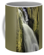 Tall Canyon Waterfalls Coffee Mug