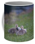 Cuddly Fury Babies Coffee Mug
