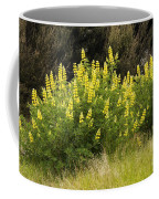 Tall Yellow Lupin Coffee Mug