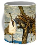 Tangled Driftwood Coffee Mug
