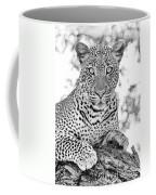 Tarangire Leopard Coffee Mug