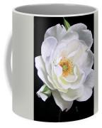 Taryn Coffee Mug
